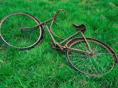 Bicycle Abandoned in a Field,County Wexford, Leinster, Ireland
