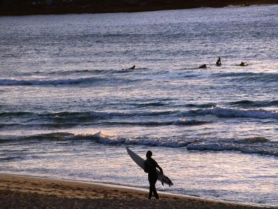 Surfers at Sunrise on Bondi Beach, Sydney, Australia