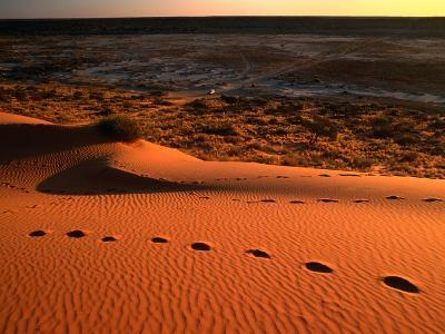 "On Top of the ""Big Red"" Sand Dune in the Simpson Desert, Birdsville,Queensland, Australia"