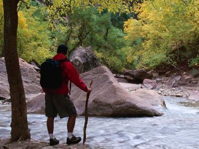 Crossing the Virgin River in the Zion National Park, Zion National Park, Utah, USA
