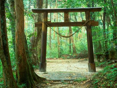 Mountain Shrine, Yakushima, Kagoshima, Japan