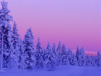 Sunset in the Lappish Winter, Finland