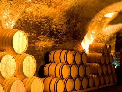19th Century Wine Cellar, Juanico Winery, Uruguay