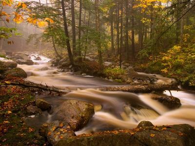 Flowing Streams Along the Appalachian Trail, East Arlington, Vermont, USA