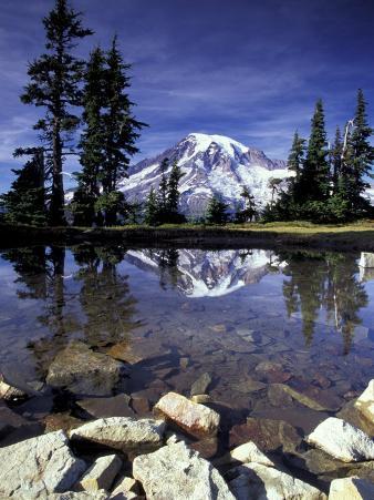 Mt. Rainier Reflected in Tarn, Mt. Rainier National Park, Washington, USA