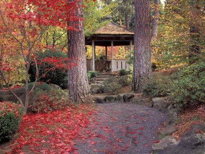 Japanese Gazebo with Fall Colors, Spokane, Washington, USA