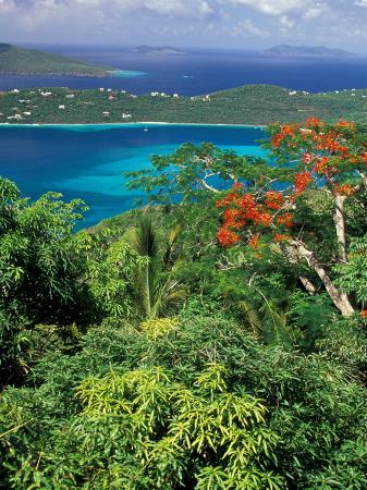 Magens Bay, St. Thomas, Caribbean