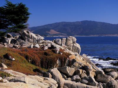 17-Mile Drive, Pescadero Point, Carmel, California, USA