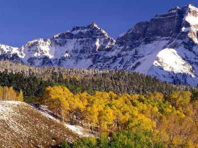 Fall Colors on Aspen Trees, Maroon Bells, Snowmass Wilderness, Colorado, USA