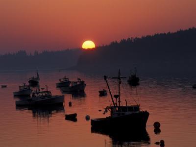 Lobster Boats in Harbor at Sunrise, Stonington, Maine, USA