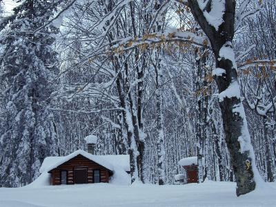Log Cabin in Snowy Woods, Chippewa County, Michigan, USA
