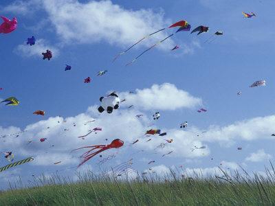 Kites Flying Along the Coastline, International Kite Festival, Long Beach,  Washington, USA