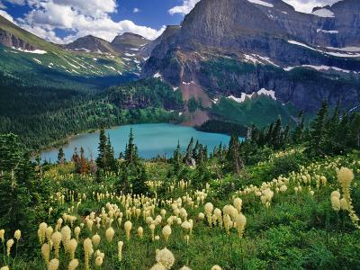 Beargrass above Grinnell Lake, Many Glacier Valley, Glacier National Park, Montana, USA