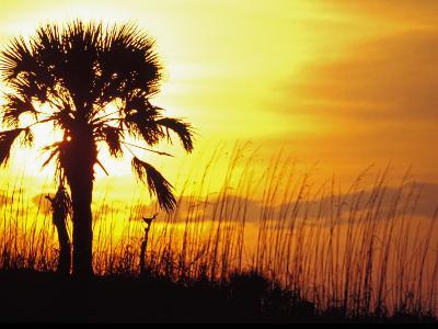 Sunset near Folley Beach, Charleston, South Carolina, USA