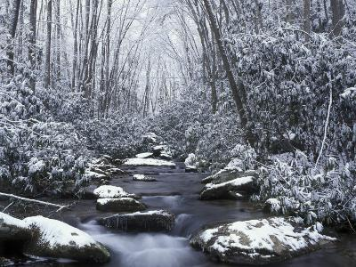 Cosby Creek in Winter, Great Smoky Mountains National Park, Tennessee, USA