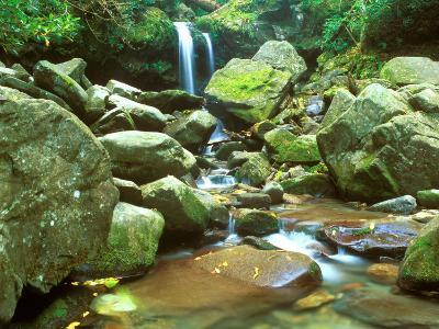 Grotto Falls, Great Smoky Mountains National Park, Tennessee, USA