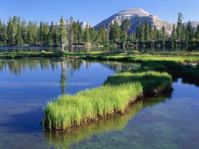 Peninsula, Margo Lake in Ashley National Forest, High Uintas Wilderness, Utah, USA
