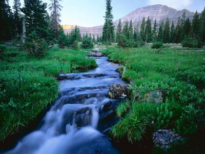 Agassiz Peak in the Distance, Stillwater Fork of Bear River Drainage, High Uintas Wilderness, Utah