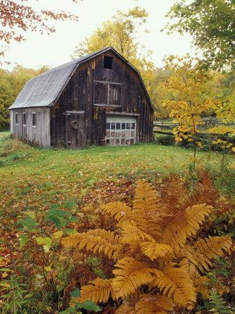 Barn and Fall Colors near Jericho Center, Vermont, USA