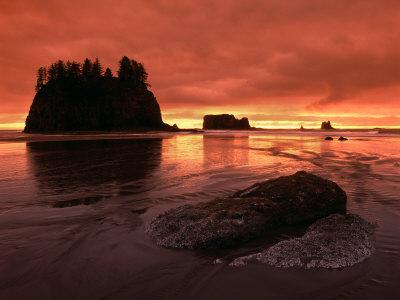 Sunset on Sea Stacks of Second Beach, Olympic National Park, Washington, USA