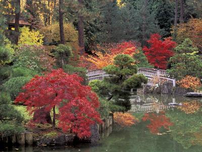 Kiri Pond and Bridge in a Japanese Garden, Spokane, Washington, USA