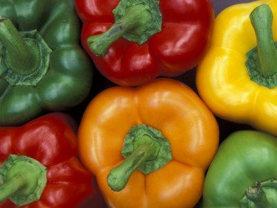 Bell Peppers, Washington, USA