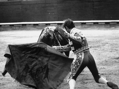 Matador Manuel Benitez, Performing in the Bullring