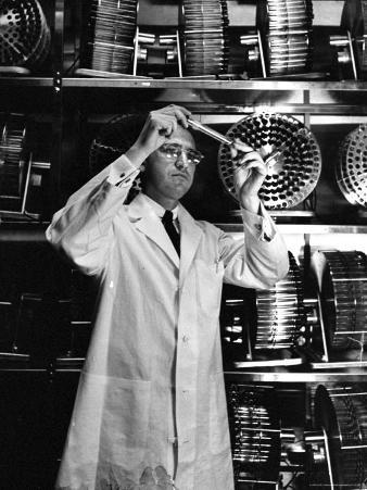 University of Pittsburgh Dr. Jonas Salk Examine Test Tube of Polio Virus Used to make Polio Vaccine