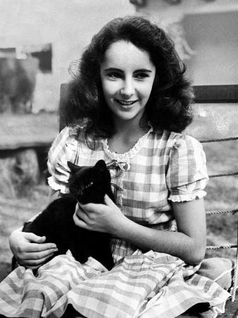 13 Year Old Actress Elizabeth Taylor Outside, Holding One of Her Many Pets, a Black Cat Named Jill
