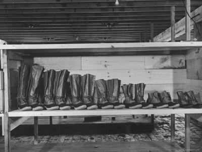 Mail Order Co. LL Bean's Famous Maine Hunting Shoes Lined Up by Size from 6 1/2 to 18 In
