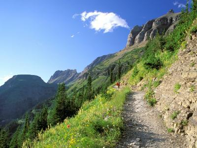 Highline Trail Traverses Under the Garden Wall, Glacier National Park, Montana, USA
