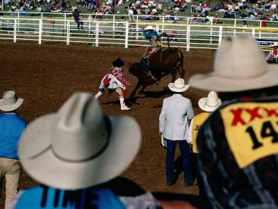 Overhead of Bull Rider from the Stands of a Rodeo, Mt. Isa, Australia