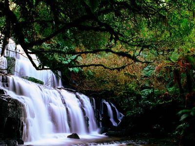 Purkenui Falls, New Zealand