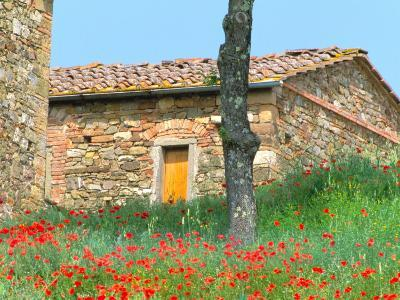 Abandoned Villa with Red Poppies, Tuscany, Italy