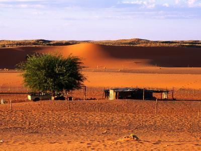 Desert Sheep Farm, Kalahari, South Africa