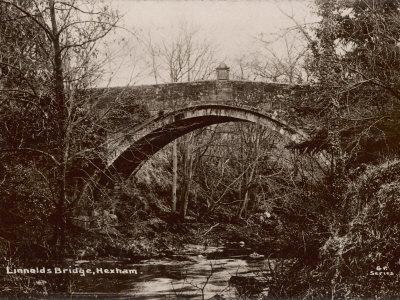Linnolds Bridge Hexham Northumberland, a Fine Single-Arch Stone Bridge