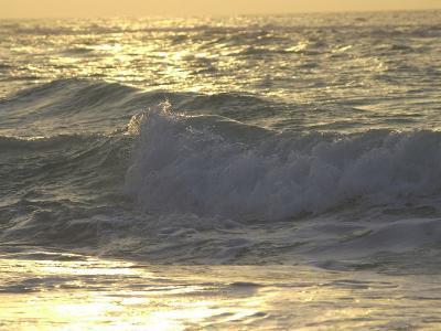 Ocean Wave, Playa Del Carmen, Mexico