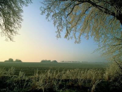 Hoarfrost, Farming Area Near Schwerin