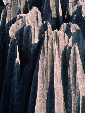 Stone Forest,Kunming, Yunnan, China