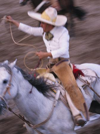 Mexico, Jalisco, Puerto Vallarta Cowboy attempts to rope a bull at the charro, rodeo