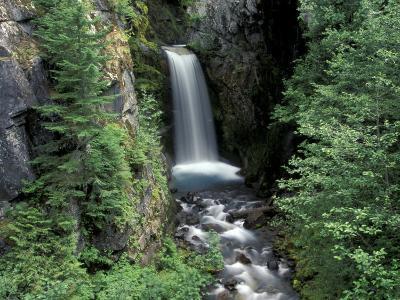 Waterfall and Lush Foliage, Mt. Rainier National Park, Washington, USA