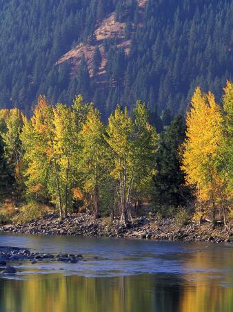 Autumn Color on the Methow River, Washington, USA