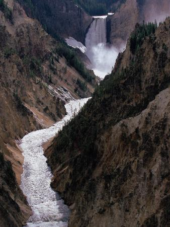Lower Falls of the Yellowstone River, Yellowstone National Park, Wyoming, USA