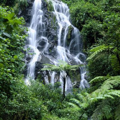 Waterfall Cascading Over Rocks in a Lush Forest Setting