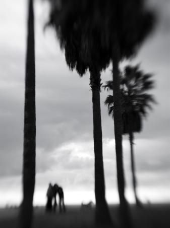 Venice Beach, Venice, Los Angeles, California, USA