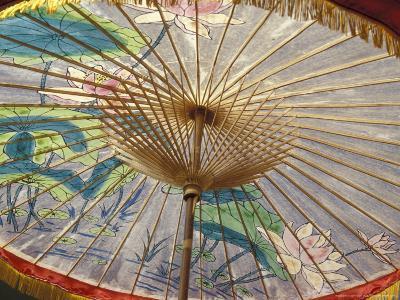 Painted Umbrellas at the Loa Fire Rocket Festival, Seattle, Washington, USA