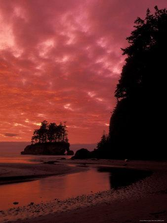 Pacific Ocean and Sunset, Olympic National Park, Washington, USA