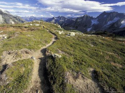Sahale Peak Trail, North Cascade National Park, Washington, USA