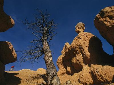 Mountain Biking Through Rock Formations in the Dixie National Forest