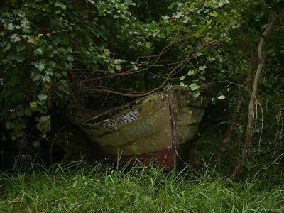 Overgrown Fishing Boat Abandoned in the Seaside Woods